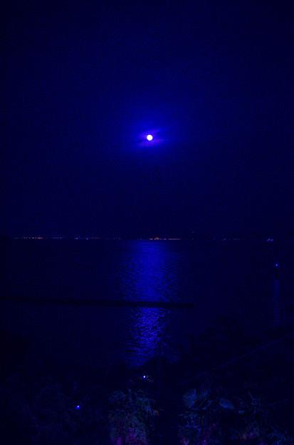 月明かりの海