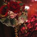 どお?綺麗?挑発するかのような赤い薔薇