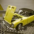 Photos: 黄色い車