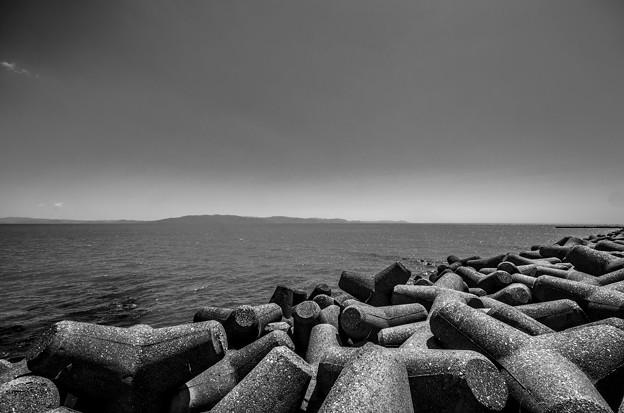 Photos: 波消しブロックの群れ