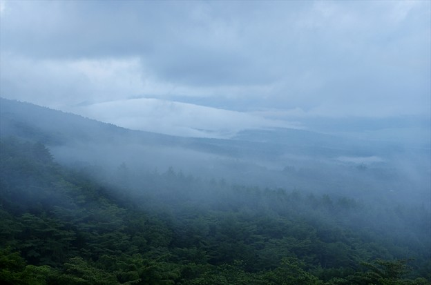 Photos: 2013富士山麓夏42「富士は雲の中」