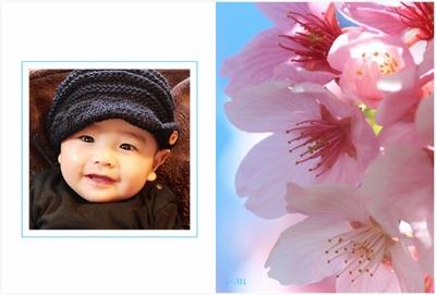 Photos: spring-sakura2-sample