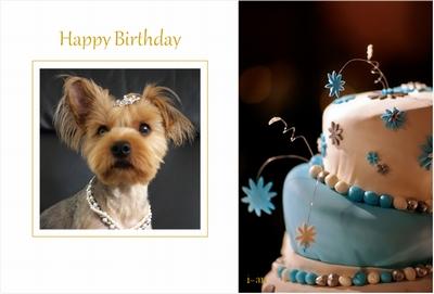 Photos: happy birthday1-sample