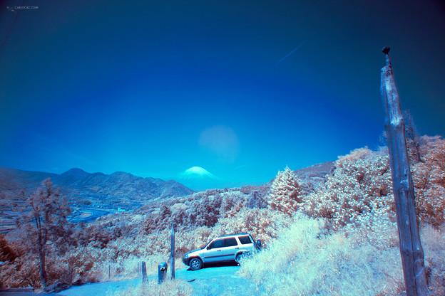 赤外線写真