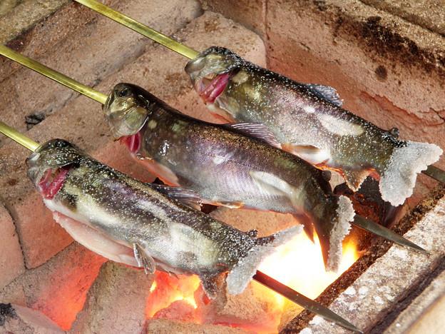 岩魚 炭火焼