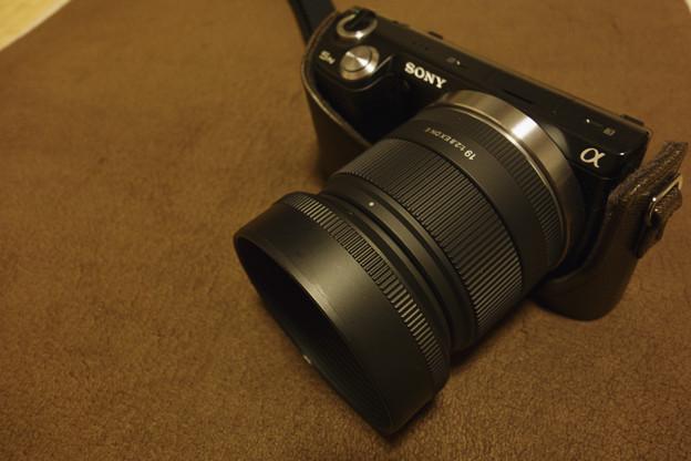 NEX-5N+SIGMA 19mm F2.8DN