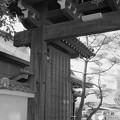 写真: 1978年 菅原神社 東門