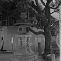 写真: 1978年 菅原神社 西門