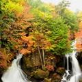 写真: 龍頭の滝の紅葉