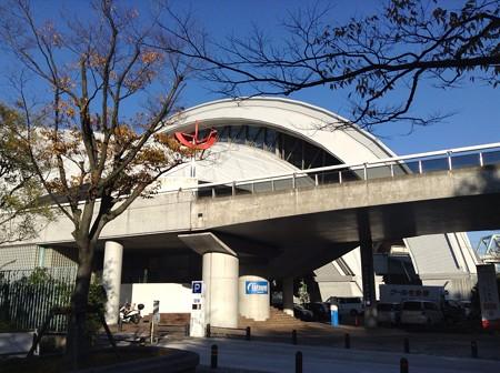 121121 東京辰巳国際水泳場