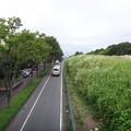 写真: 130926 尾根幹線
