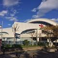 写真: 131113 東京辰巳国際水泳場