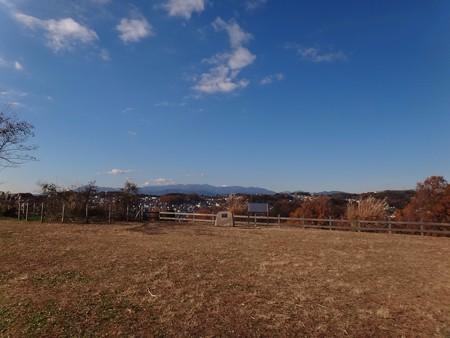 131130 小山田緑地