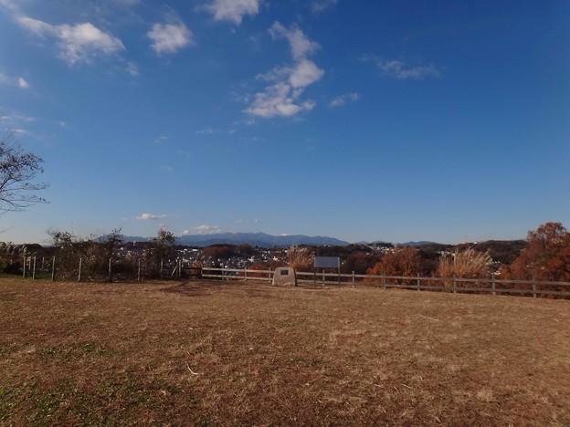 写真: 131130 小山田緑地