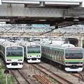 Photos: E231系3種並び