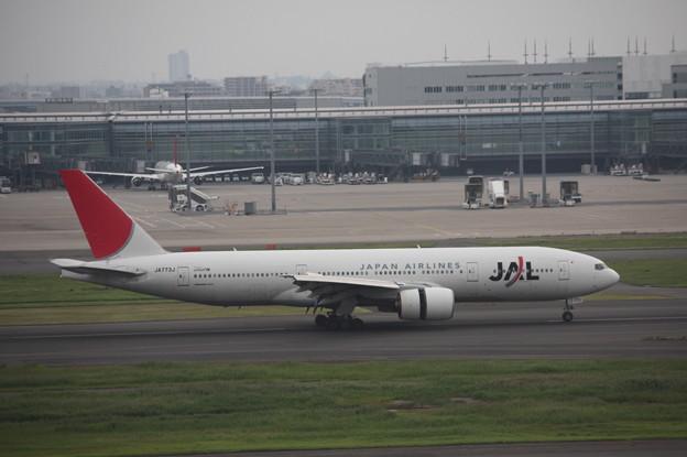 JAL ボーイング777-200 JA773J (5)