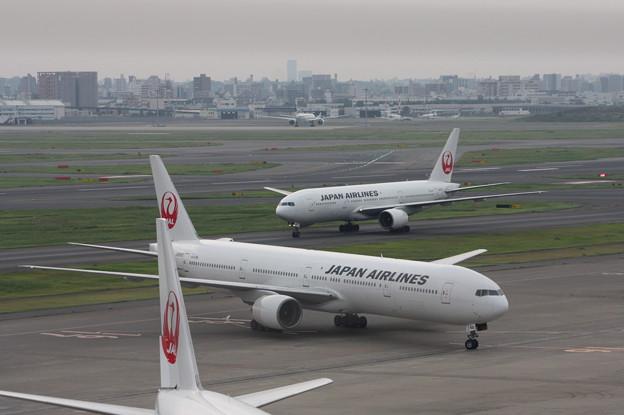 JAL 鶴丸同士の並び
