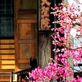 Photos: 大聖院