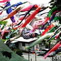 写真: 白幡神社