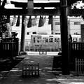 雑司が谷・大鳥神社