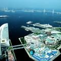 Photos: ランドマークタワー・スカイガーデン~横浜港方面