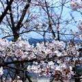 Photos: 横須賀・走水水源地