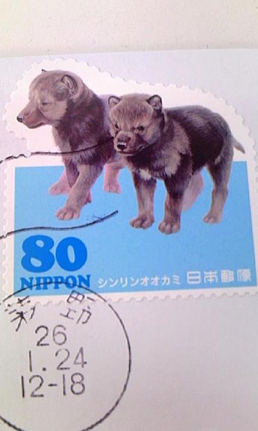 シンリンオオカミの切手