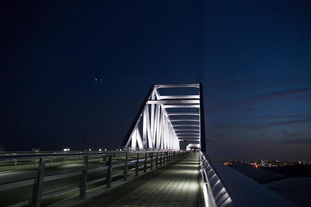 東京ゲートブリッジの上から1