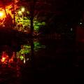 Photos: 岩手公園 秋の夜長もいいもので