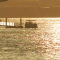 船町渡船1
