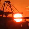 Photos: 船町渡船場の夕陽1