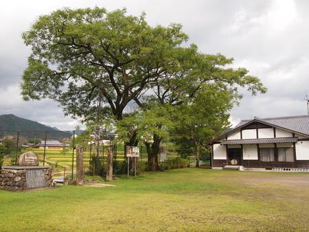 岩井川神社
