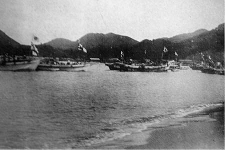 totoro port ships e