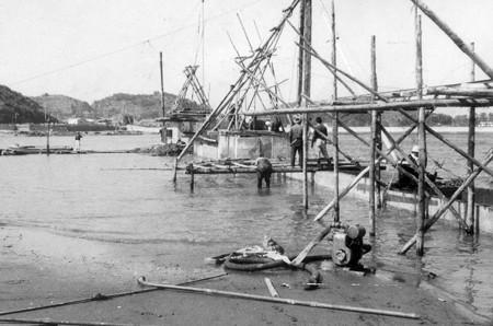 1961 totoro