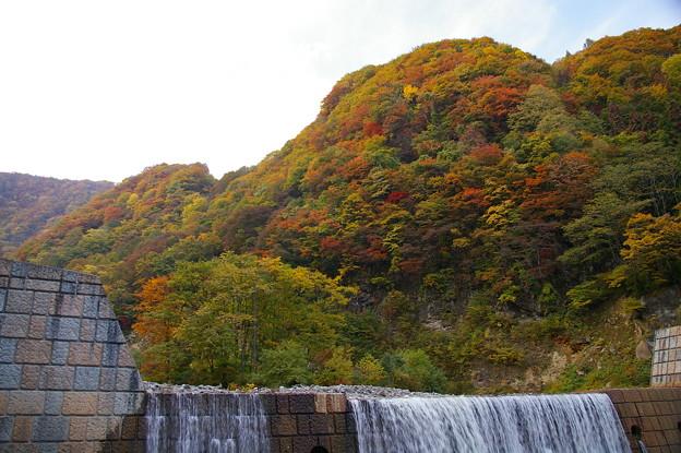 苗名滝への路