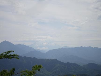 高尾山の山頂からの富士