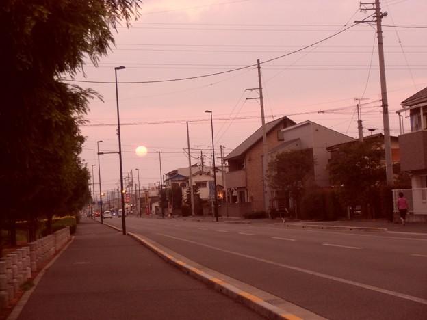 暮色の散歩道