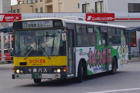 IMGP9517