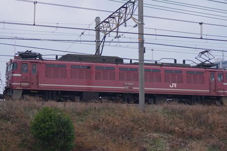 IMGP6073
