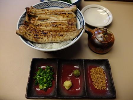 うなぎ専門店 本多 白焼丼 ¥2900