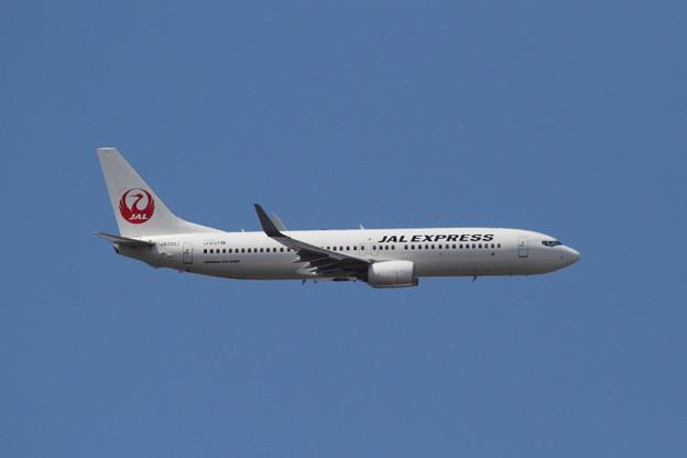 JAL  B737-800  JA336J