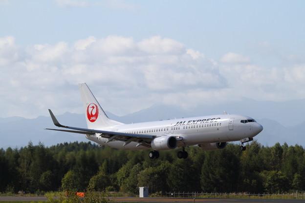 JAL Boeing737-800 JA316J