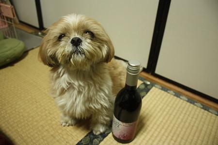 ワインと共に…