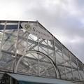 写真: 宝塚ガーデンフィールズ13122465