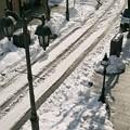 パセオ通りの轍