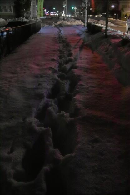 雪道に残る足跡