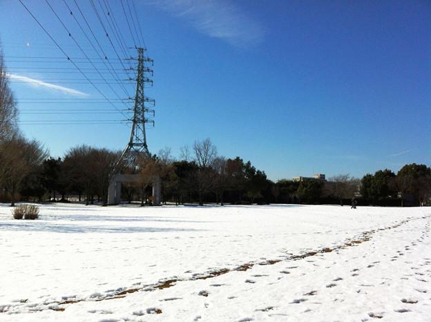 雪の残る公園