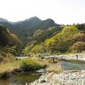 Photos: 渓流