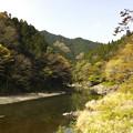 写真: 渓流