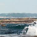 写真: 湘南の海